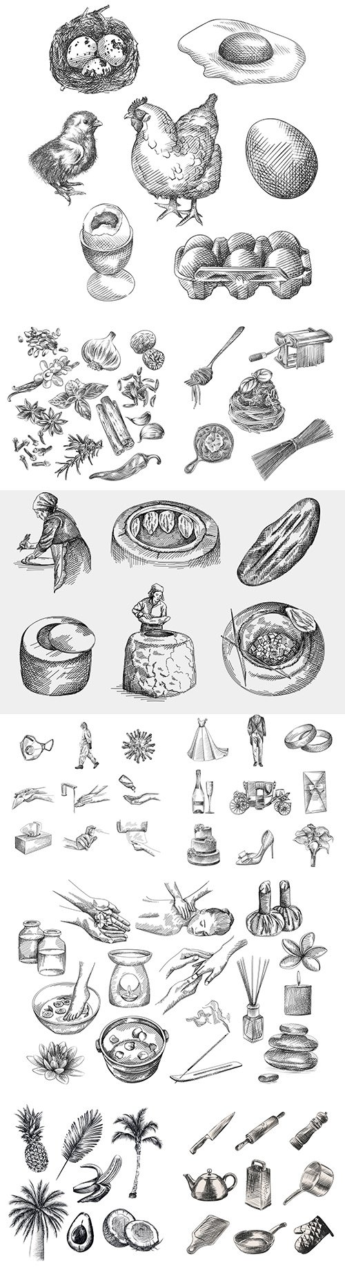 Hand-drawn sketches design vector illustrations