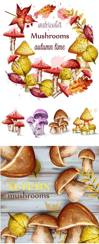 Mushrooms Watercolor Set