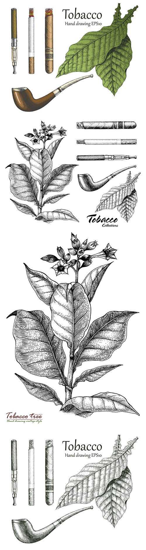 Tobacco collection hand-drawn in vintage style
