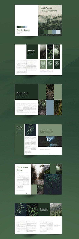 Green Brochure Layout 336426365