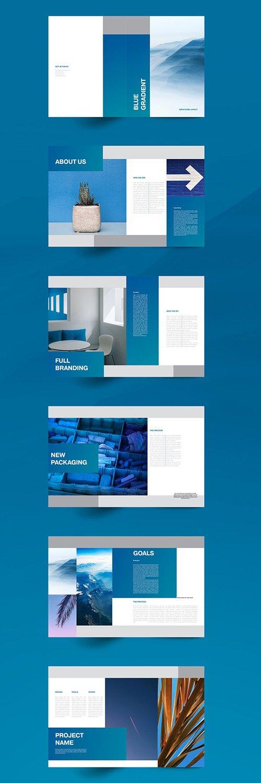 Blue Brochure Layout 336426215