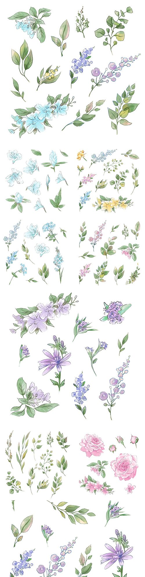 Flowers and twigs with leaves watercolor design illustrations