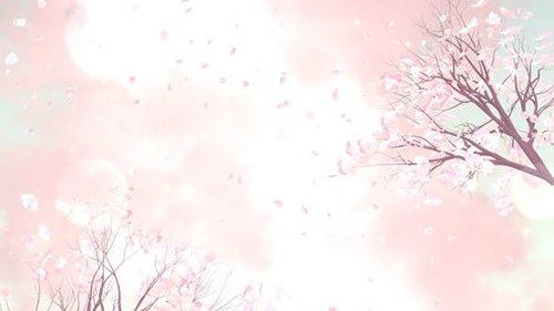 Plum Blossom 25875678
