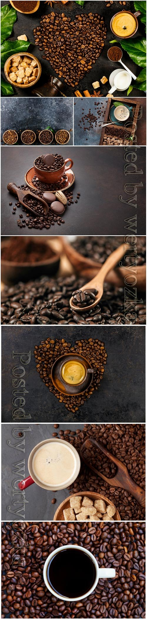 Coffee and coffee beans stock photo