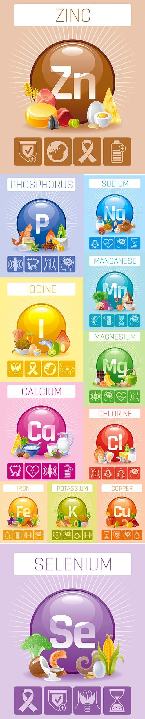 Mineral and Vitamin Supplement Illustrations Vector