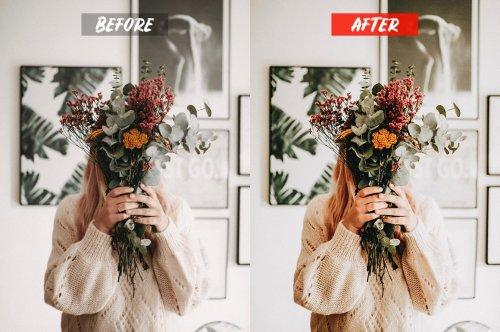 CreativeMarket - Freelancer Lightroom Presets 5119127