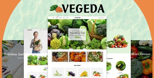 ThemeForest - Vegeda v1.0.1 - Vegetables And Organic Food eCommerce Shopify Theme - 27469486