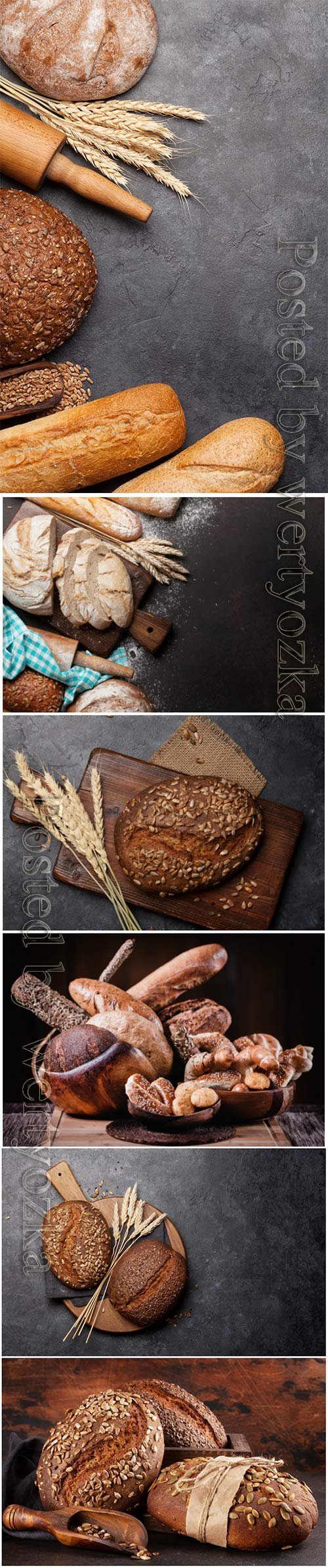 Various bread with wheat flour and cooking