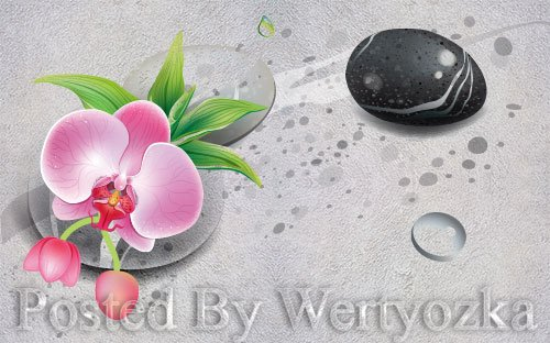 3D psd models modern fresh stone flower tv background wall