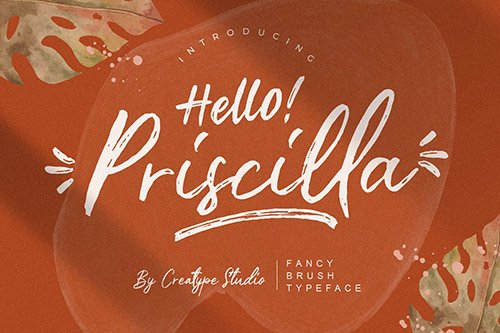 Priscilla Fancy Brush Typeface