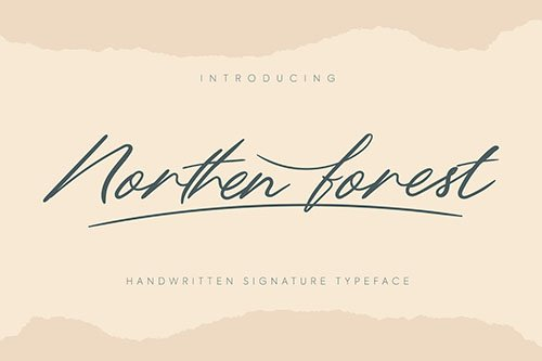 Northern Forest | Handwritten Signature Typeface