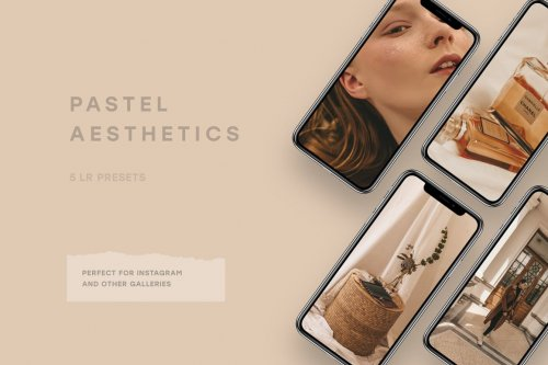 CreativeMarket - Pearl Nude – 5 Lightroom Preset 5154119