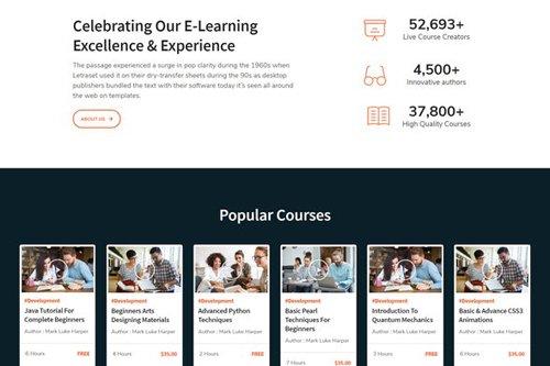 ThemeForest - LearnKit v1.0 - e-Learning Elementor Template Kit - 27925479