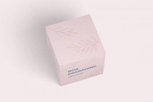 CreativeMarket - Box Packaging Mockup 5270881