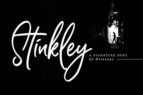 Stinkley-Beautiful Handwritten Font