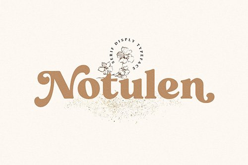 Notulen Display Serif Typeface