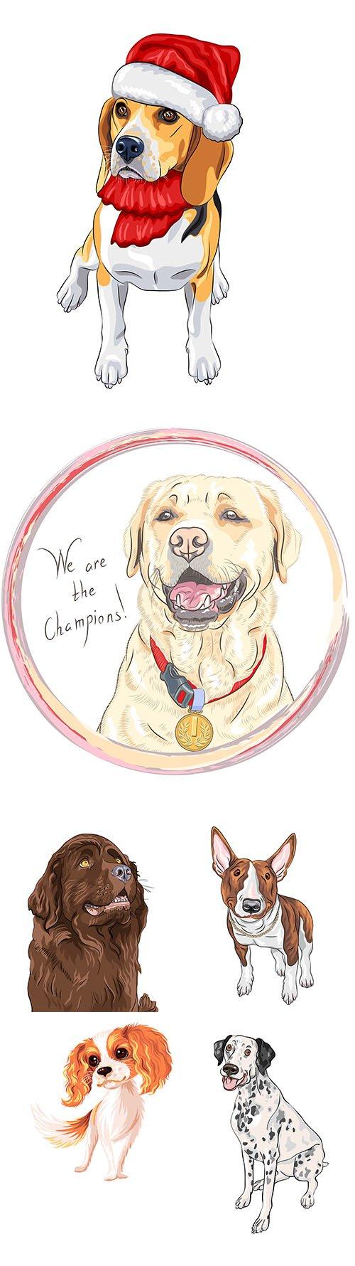 Color sketch dog illustrations