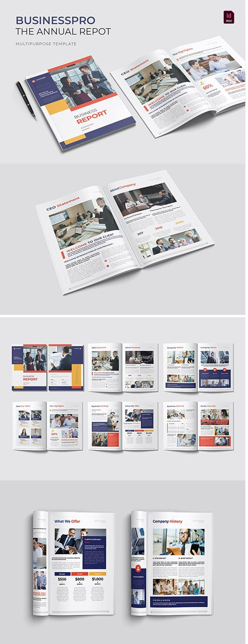 Businesspro | Annual Report