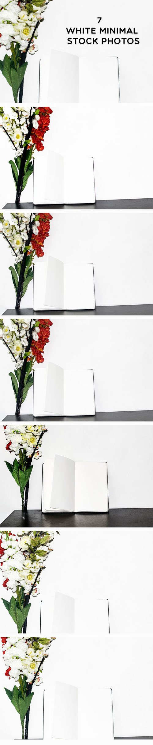 7 White Minimal Floral Stock Photos